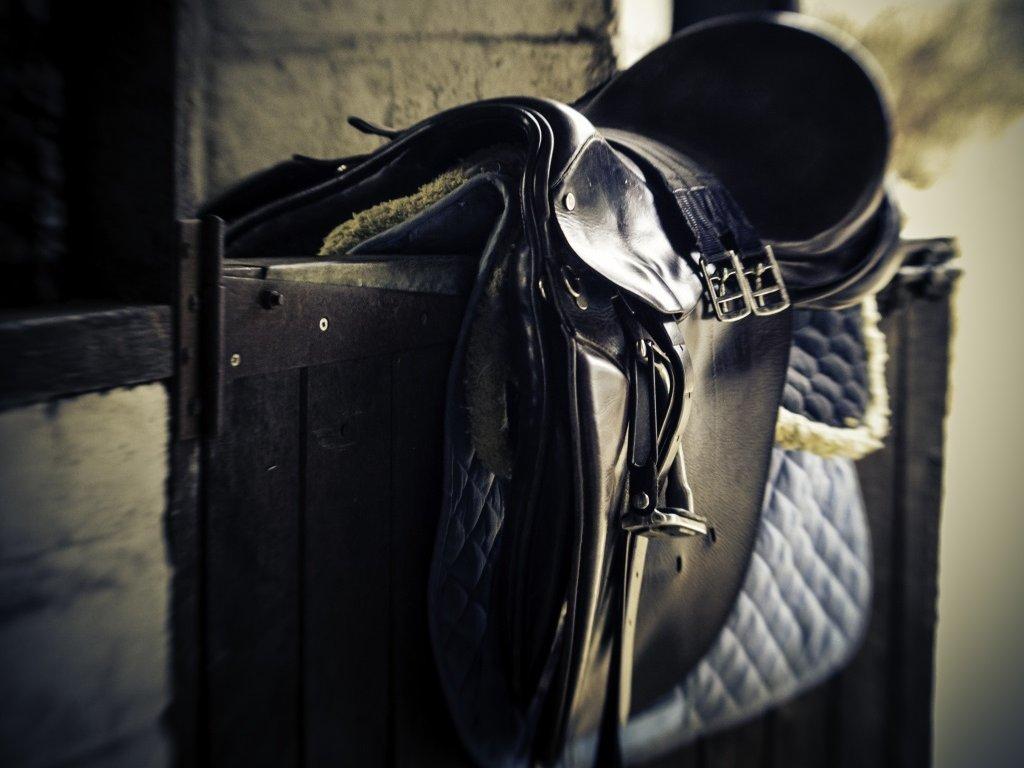 Sadel-Stall-Häst
